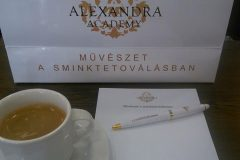 10940545_10204813439354516_194161358638483868_n-alexandra-academy