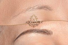 alexandra hairstroke eyebrow
